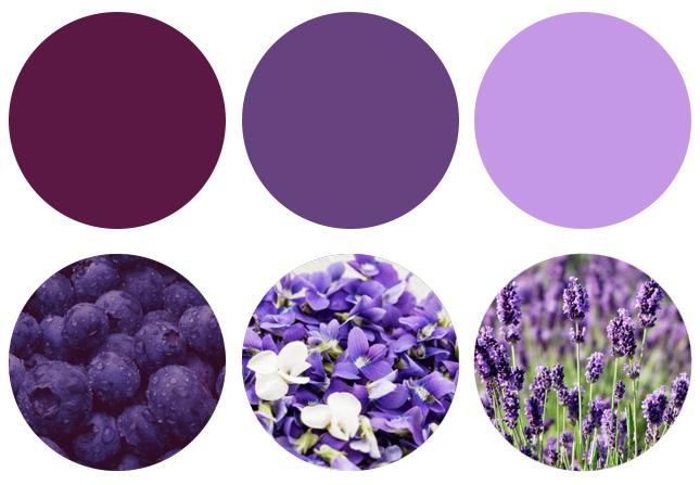 barvy podle Josef Trakal design