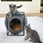 Pelíšek pro kočky, které mají styl, Josef Trakal
