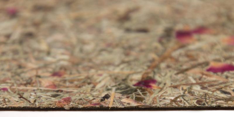 organoid, přírodní materiály, josef trakal